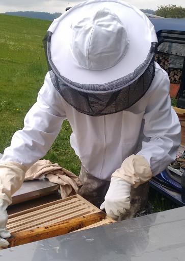 Imker Gerald (Hausname Bramreither) bei seinen Bienen in der Region Mühlviertel - Wir imkern