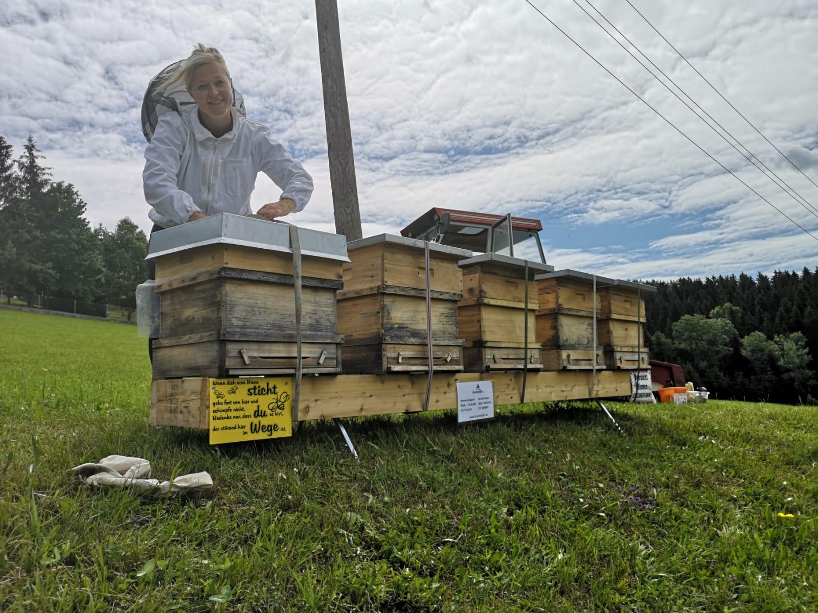Bio Imkerei Bramreither - Helfenberg - Penning - Mühlviertel - Piberstein - Neuer Bienenstand