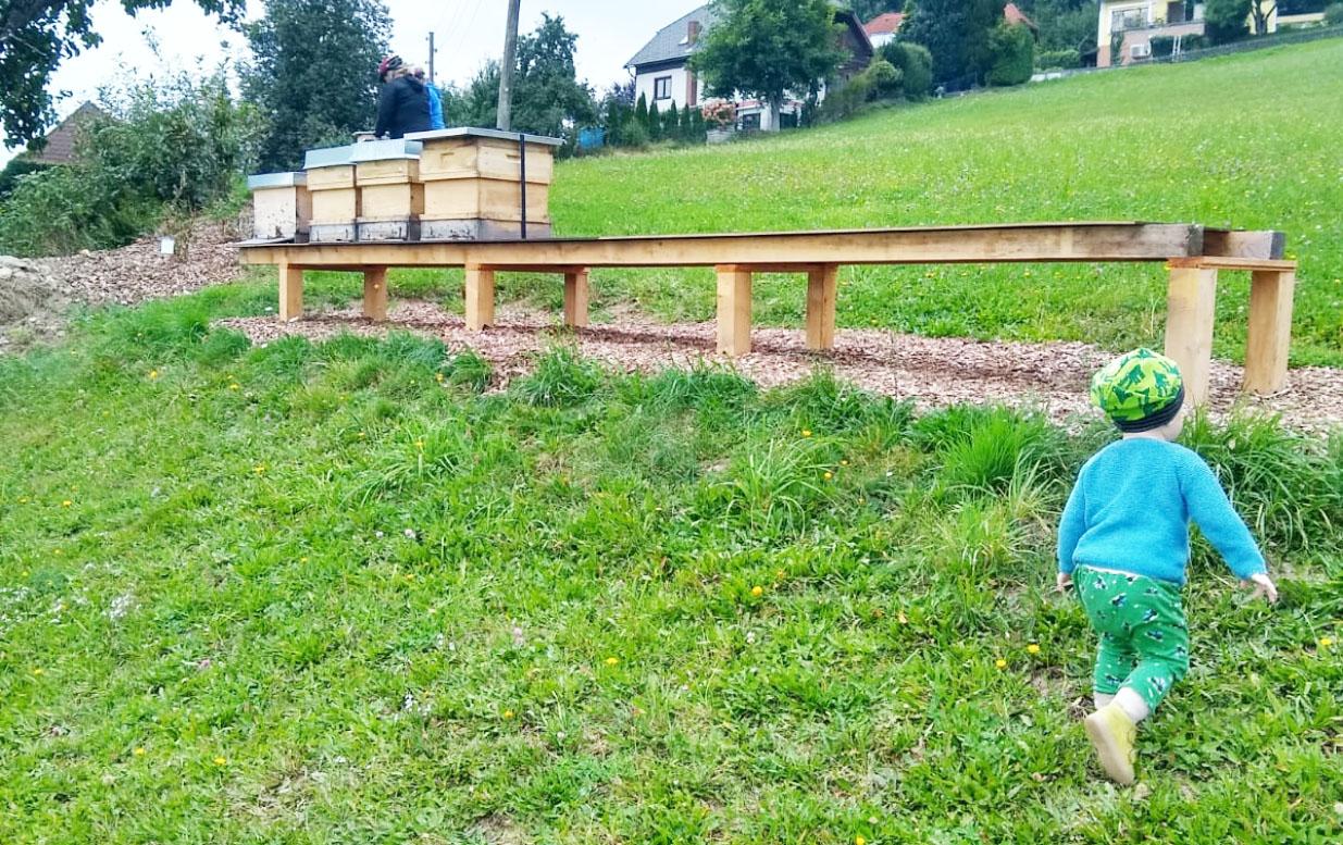 Bio Imkerei Bramreither - Mühlviertel - Bezug des neuen Bienenstandes - Helfenberg - Penning - Biene