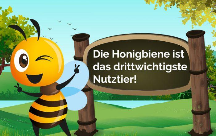 Bio Imkerei Bramreither - Biene Valentine - Honigbiene ist das drittwichtigste Nutztier - Mühlviertel - Rohrbach - Helfenberg - Penning