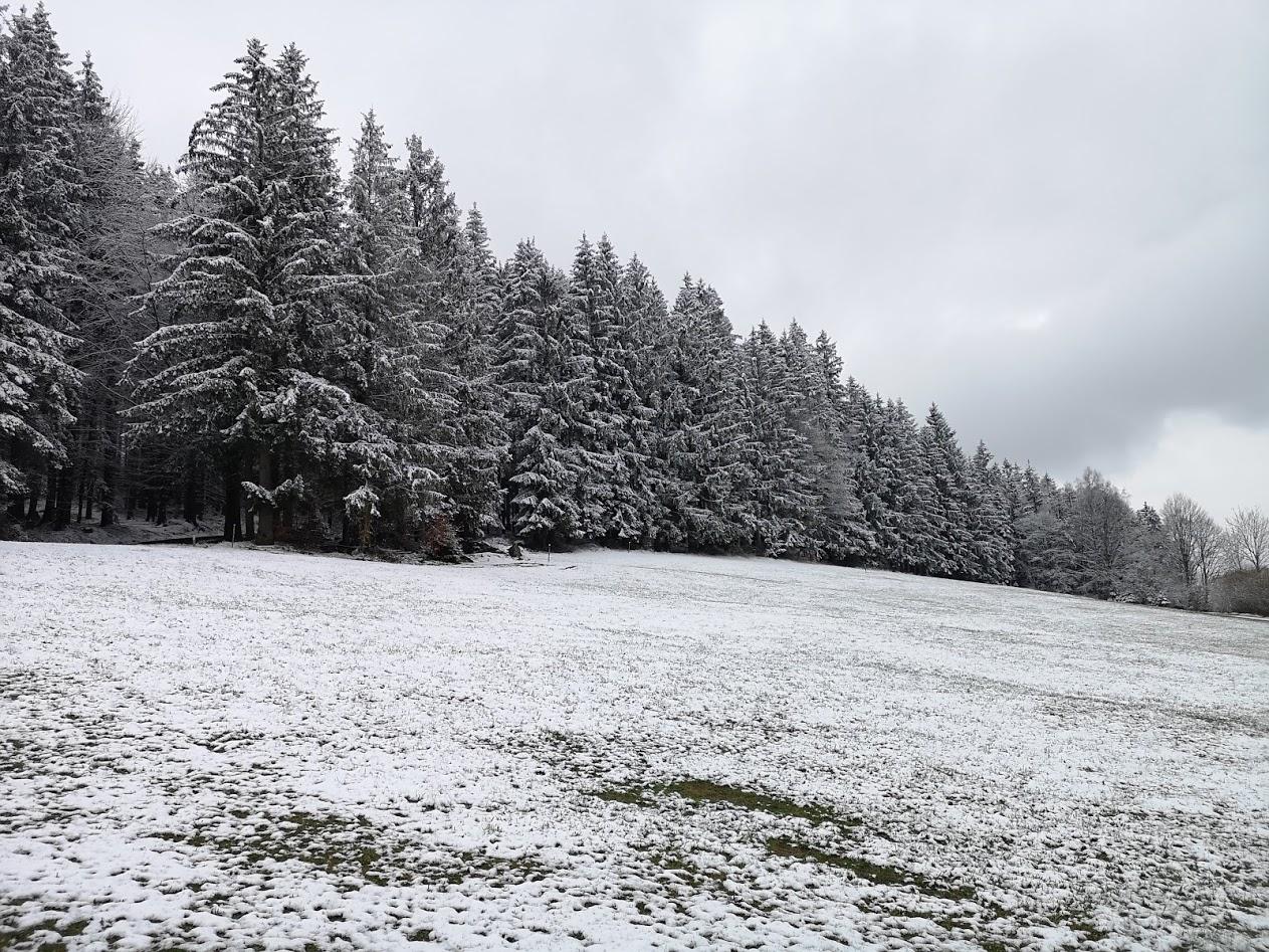 Bio Imkerei Bramreither - Penning - Helfenberg - Rohrbach - Mühlviertel - April - erneuter Wintereinbruch - Imker - Biene - Honig