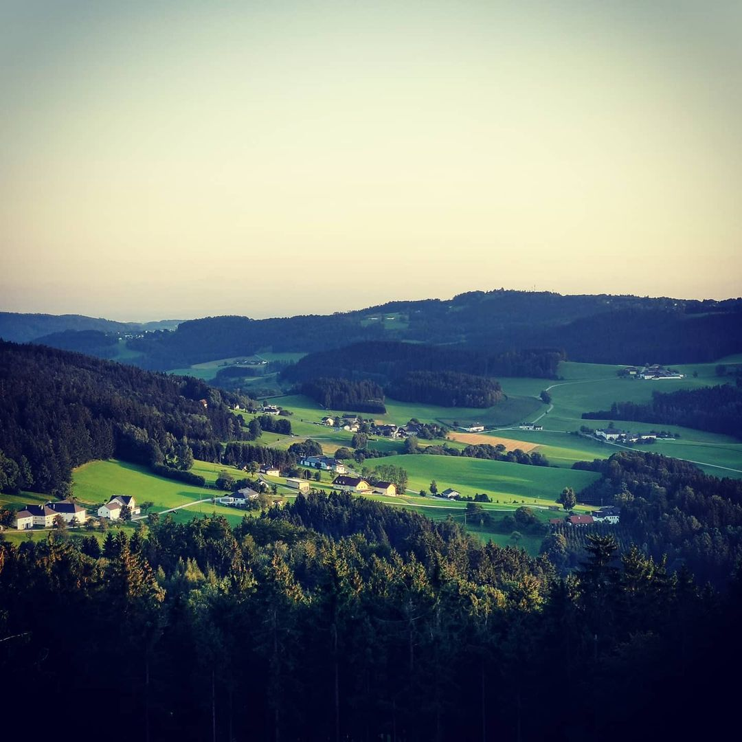 Bio Imkerei Bramreither - das Mühlviertel - Rohrbach - Helfenberg - Aussicht Abendsonne